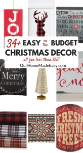 34+ Christmas Décor Items that Fit Your Budget!