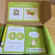 Kiwi Crate Fun Box-All About Bugs!