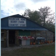 Fall Family Fun at the Mountain Home Berry Farm Pumpkin Patch