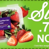 $.75/1 Earthbound Farms Organic Strawberries Printable Coupon