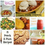 15 Fabulous Summer Peach and Plum Recipes