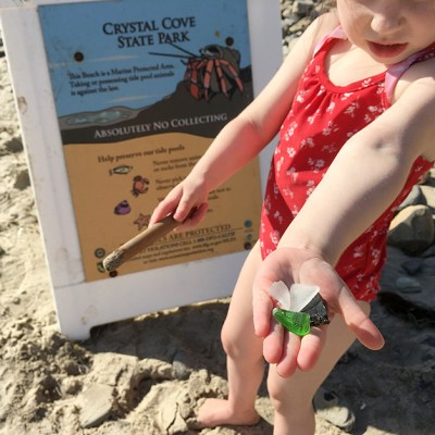 Learning & Fun For The Kids In Southern California – Crystal Cove State Park