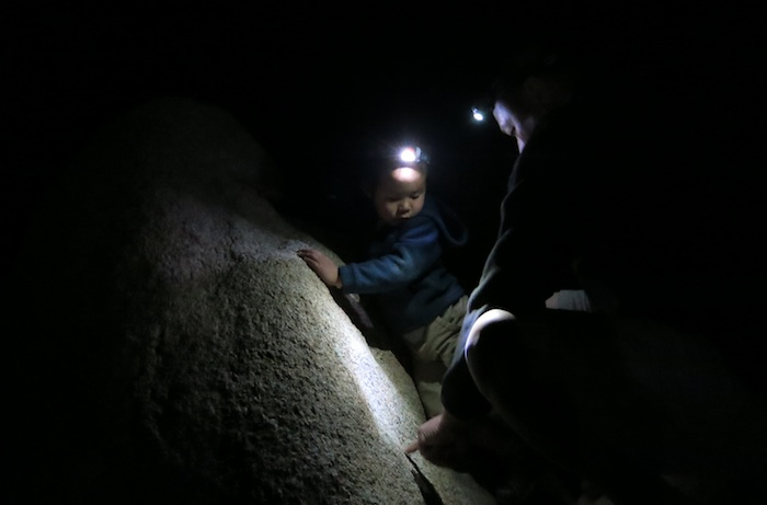 A little night bouldering with headlamp.
