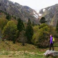 Aussichtsreiche Kraxelpartie in den Vogesen - der Sentier des Roches