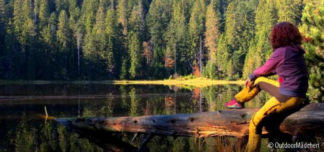 Schwarzwald kompakt: Eine Wanderung durch den Bannwald bei Baiersbronn