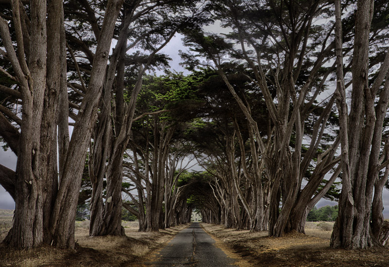 Obvious shot of Point Reyes