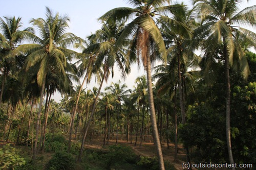 MG 6454 thumb Kerala, the heat and the wonder of Southern India: part one