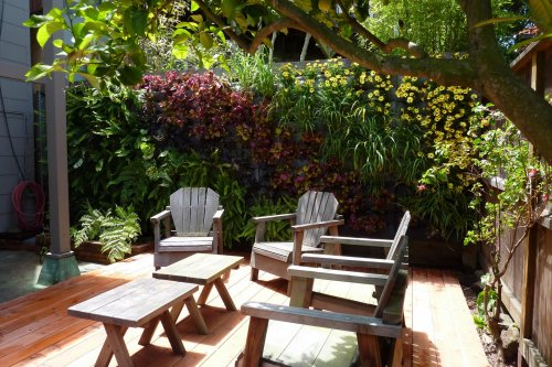 Medium Of Vertical Wall Garden Plants