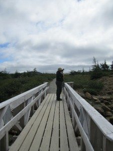 David On The Tablelands Trail