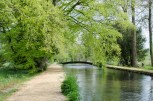 Riverside walk at Mottisfont Abbey