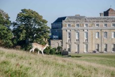 Petworth House with a deer about to make a dash across the front of the house. A dozen or more soon followed!