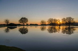 Sunset at Janesmoor pond in the New Forest National Park. A very chilly 2°C!. Posted on the BBC Weather Watchers page.
