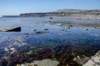 Kimmeridge Bay, Wareham, Dorset