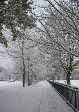 Bells Lane Stubbington with Stubbigton recreation park on the right, December 2010