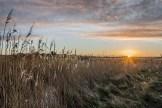 Sunrise at the Meon Shore_20190211_21319