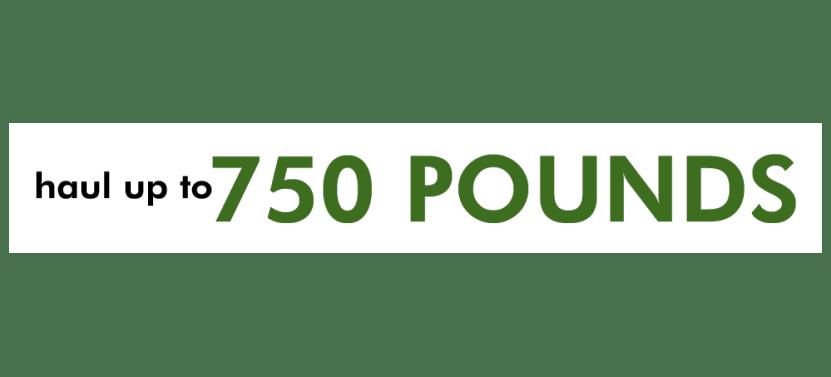 HOMEPAGE TITLE SLIDE - 750LBS