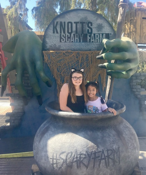 knotts-spooky-farm-cauldron