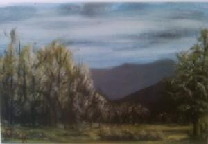 Heber Meadow