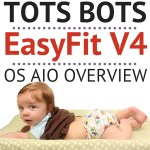 "<headline-envy data-experiment=""5359071219"">Tots Bots EasyFit V4 One Size All In One Cloth Diaper Overview</headline-envy>"