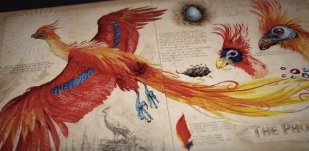 harrypotter-chamberofsecrets-illustrated-phoenix