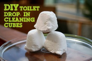 DIY Toilet Drop-in cleaning cubes using essential oils