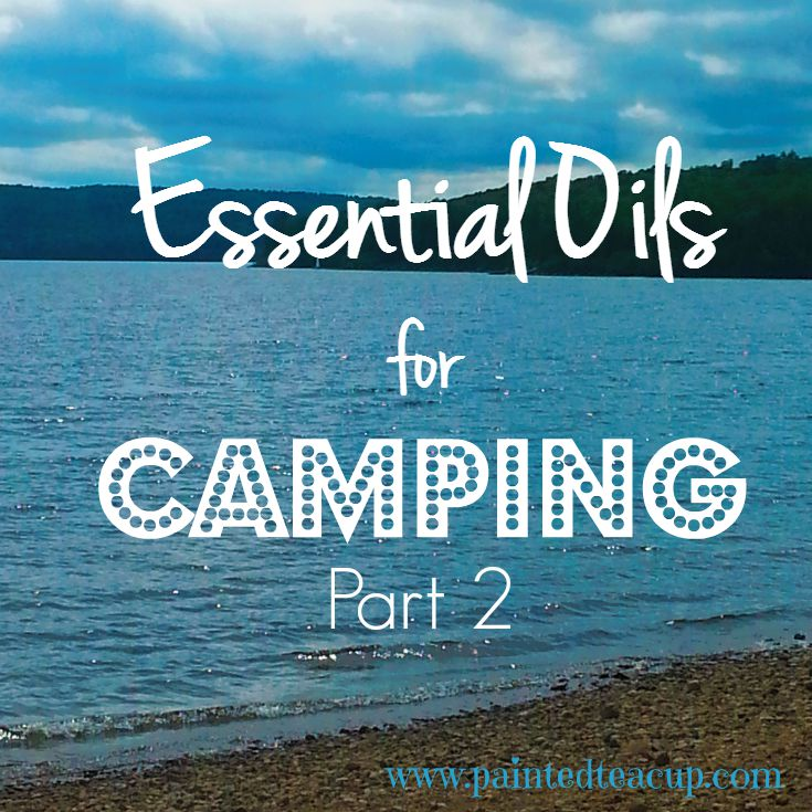 Essential Oils for Camping Part 2