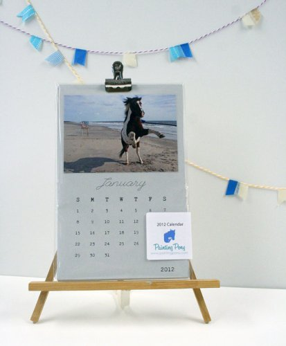 2012 painting pony calendar