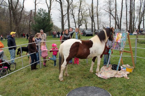 painting pony at the point to point races