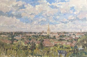 Norwich from Mousehold Avenue by Patrick Boswell