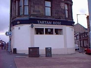 tartan_rose
