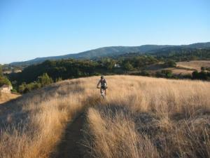 Photo courtesy of Arastradero Open Space Preserve
