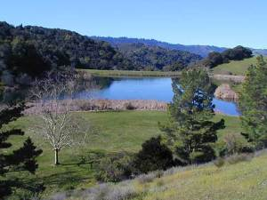 Foothills Park offers miles of hiking trails and open space. Photo by Friends of Foothills Park.