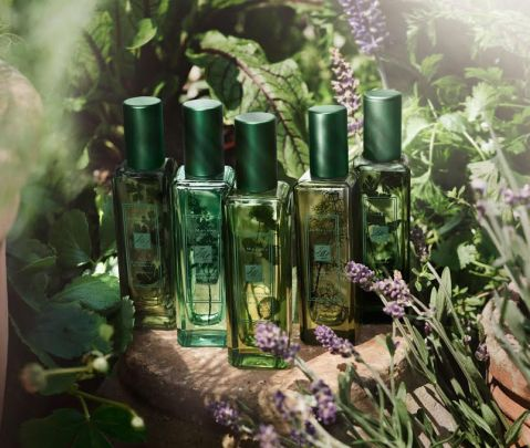 Jo Malone lancia The Herb Garden