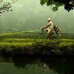 Andare in bicicletta è antidepressivo