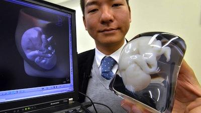 Empresa japonesa Fasotec Foto de AFP