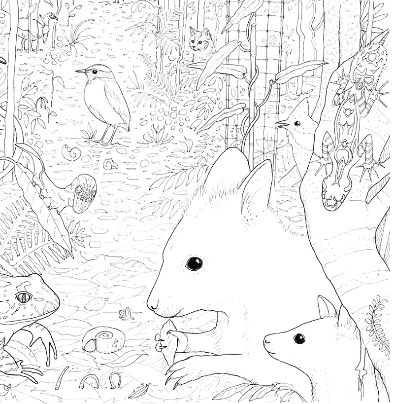 Land for Wildlife colouring pages