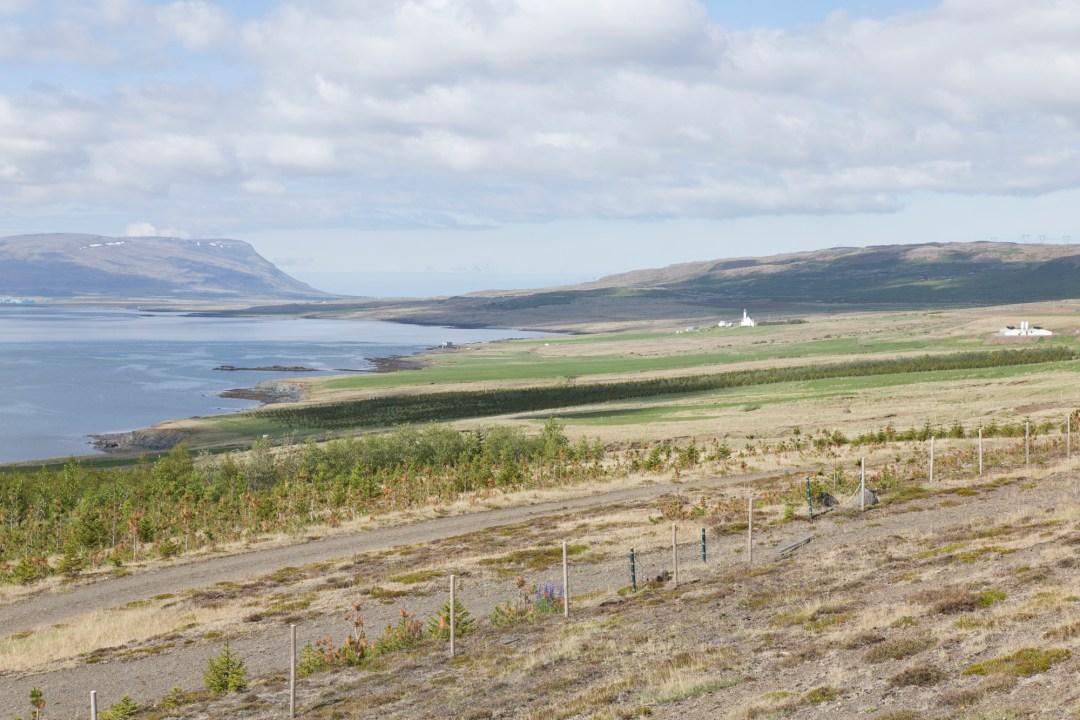 Road Trip Islande - Hvalfjodur - www.paperboat.fr