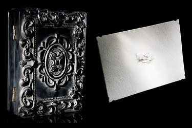 D.L. & Co. Calligraphy Dove Note Cards in a Black Resin Box