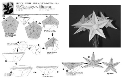 origami star flower diagram
