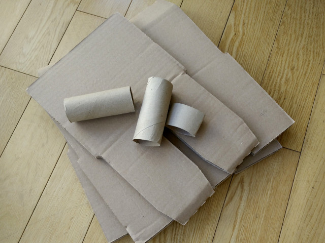 Cardboard and recycled toilet rolls
