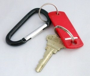 Carabiner with keys