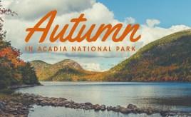Autumn in Acadia National Park