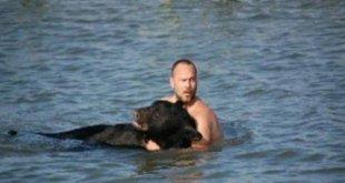 Il se jette à l'eau pour sauver un ours de la noyade