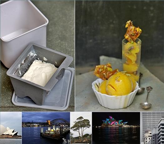 Mango Frozen Yogurt