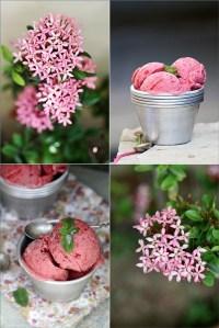 Plum Frozen Yogurt