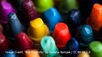 DiversityPhoto2
