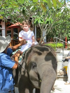 Emerson sitting on the elephant at the Marriott Mai Khao Beach Resort