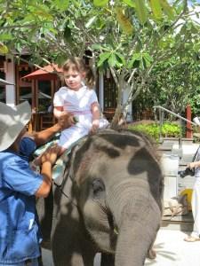 Emerson sitting on the elephant at the Marriott Mai Khao Beach Resort