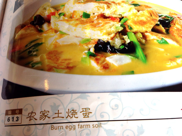 Burn Egg Farm Soil