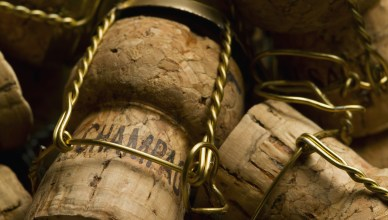 visite cave de champagne